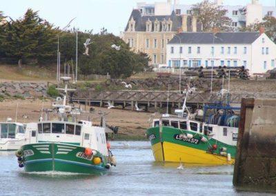 Bateaux de pêche à la sardines